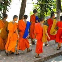 Walking monchs