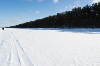 Latvia landscape