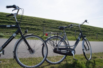 Bicycles on Texel