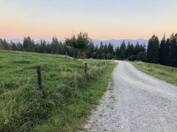 Panoramic views from Taubenberg