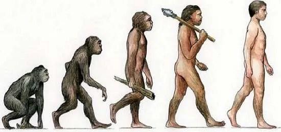 Части на човешкото тяло, които са станали безполезни в процеса на еволюцията