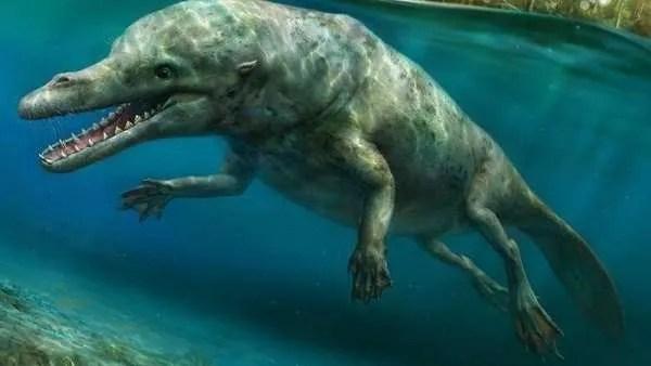 Палеонтолозите са открили останки от необичайно древно животно в Перу
