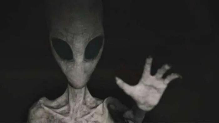 Млада жена се сблъсква с агресивен сив извънземен в дома си
