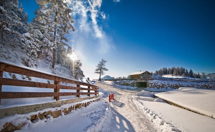 Narrow road covered by snow at countryside. Winter landscape with snowed trees, road and wooden fence. Cold winter day at countryside mountains village scenery,