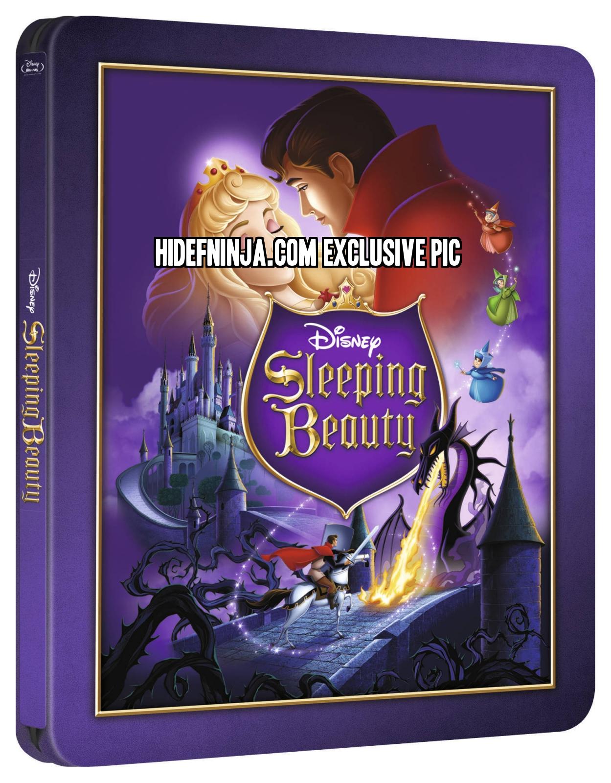 La Belle Au Bois Dormant En Anglais : belle, dormant, anglais, Sleeping, Beauty, (Blu-ray, SteelBook), (Zavvi, Exclusive:, Disney, Collection, Hi-Def, Ninja, Culture, Movie, Collectible, Community