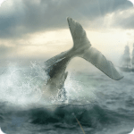 Moby Dick APK Mod Download for android
