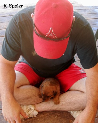 Bill with one of Reata & Kodi's puppies.