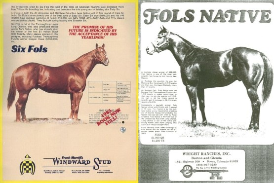 Fols Native TB & Six Fols