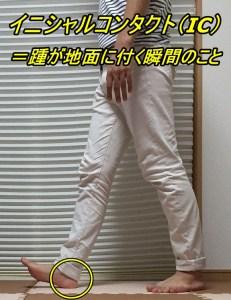 歩行周期 イニシャルコンタクト(IC)