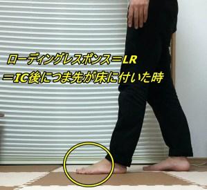 歩行周期 LR