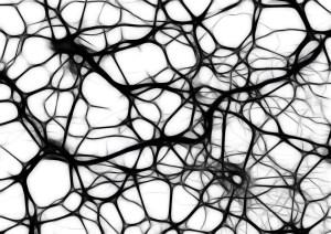 neurons-440660_960_720