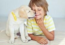 Как подружить ребенка и собаку: правила поведения