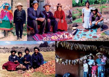06 Familias de Ancash, Puno, San Martín, Ayacucho y Cajamarca mostrando la diversidad y variabilidad de sus cultivos.