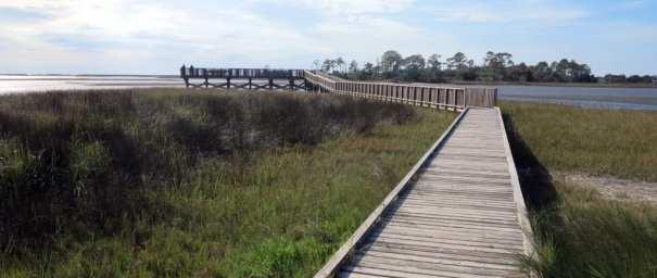 Brücke führt über Sumpflandschaft
