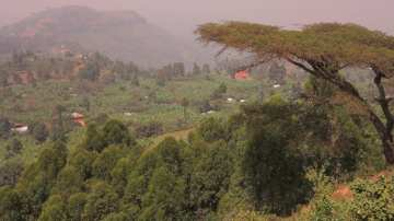 Grüne afrikanische Berglandschaft