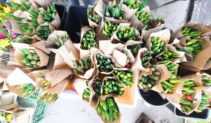 Tulpen auf dem Wochenmarkt auf dem Jiriho z Podebrad in Prag