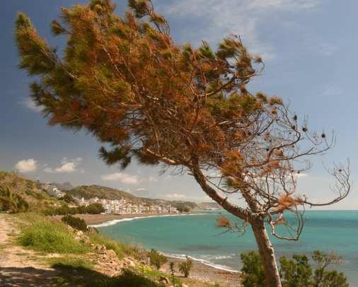 Türkisfarbene Bucht Mirtos mit leerem Strand auf Kreta