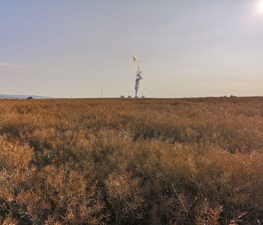 Kühltürme eines Kraftwerks, davor ein Kornfeld, bei Kadan in Tschechien