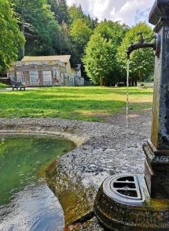 Plätschernde Quelle und grüne Wiese in Kyselka in Westböhmen