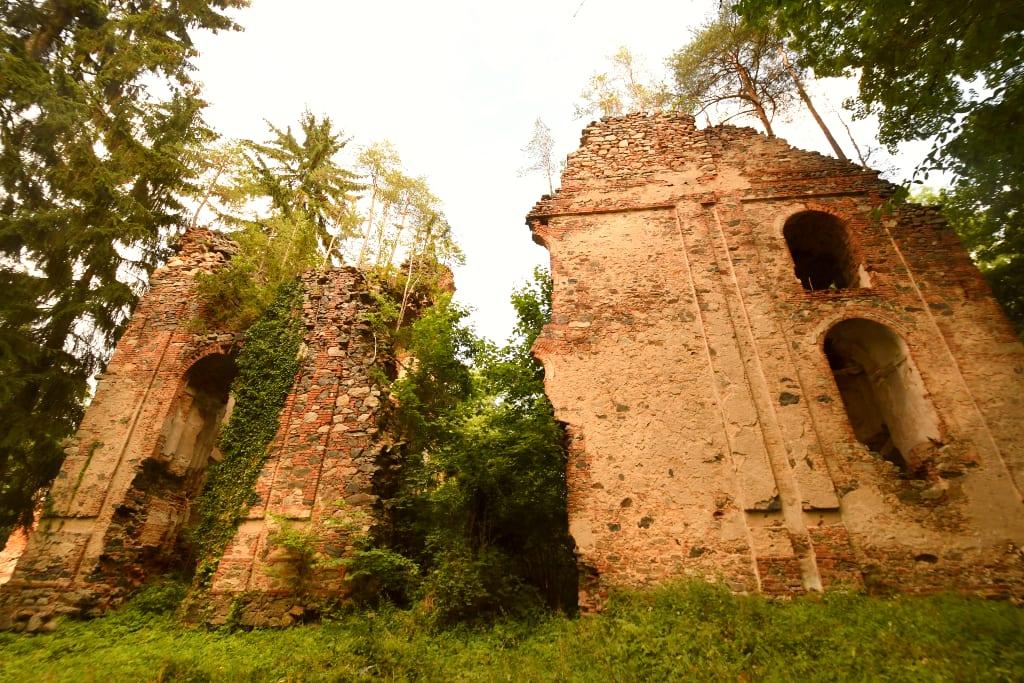 Kirchenruinen im Wald