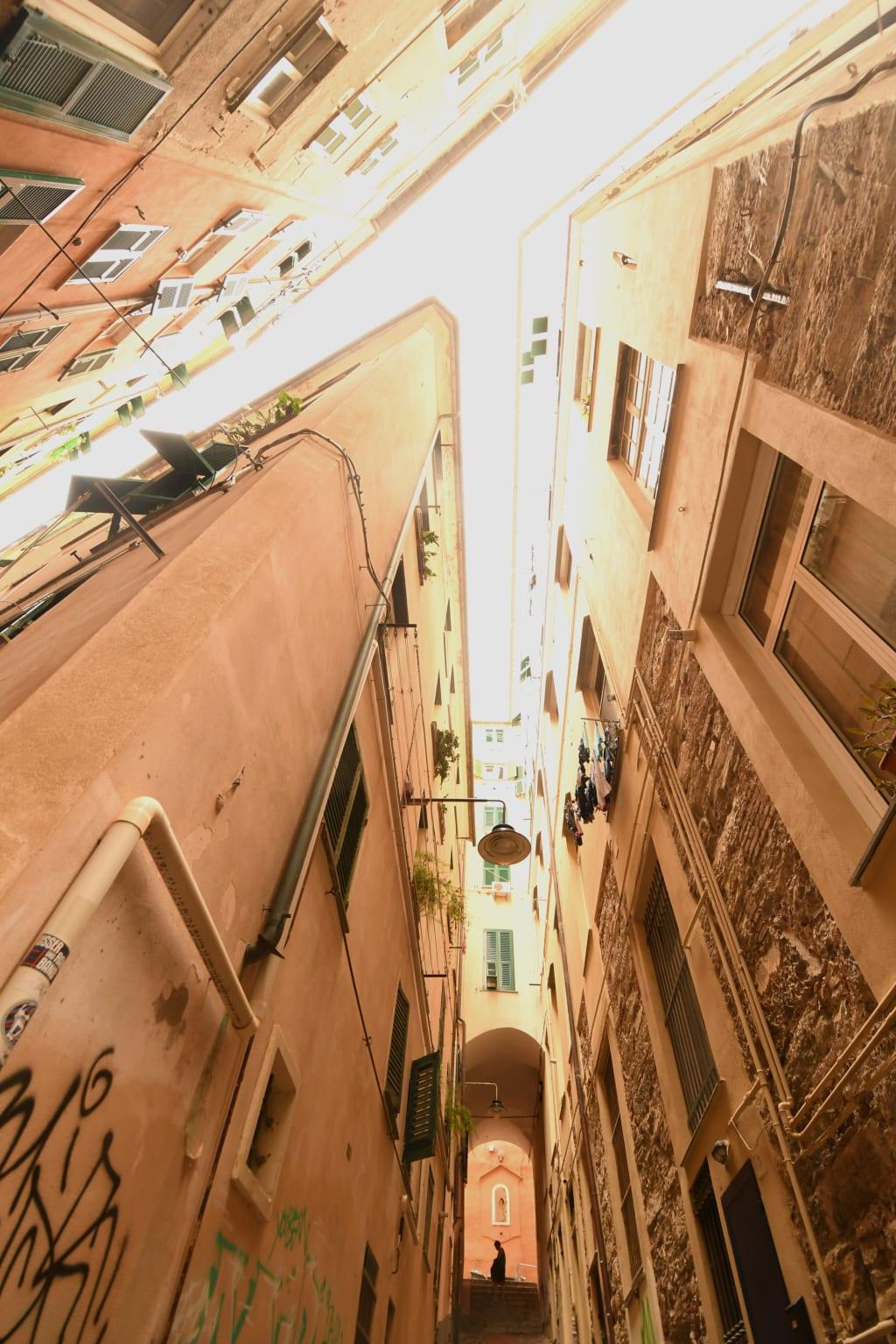 Altstadthäuser von unten