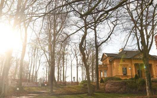 Villa mit Bäumen im Winter