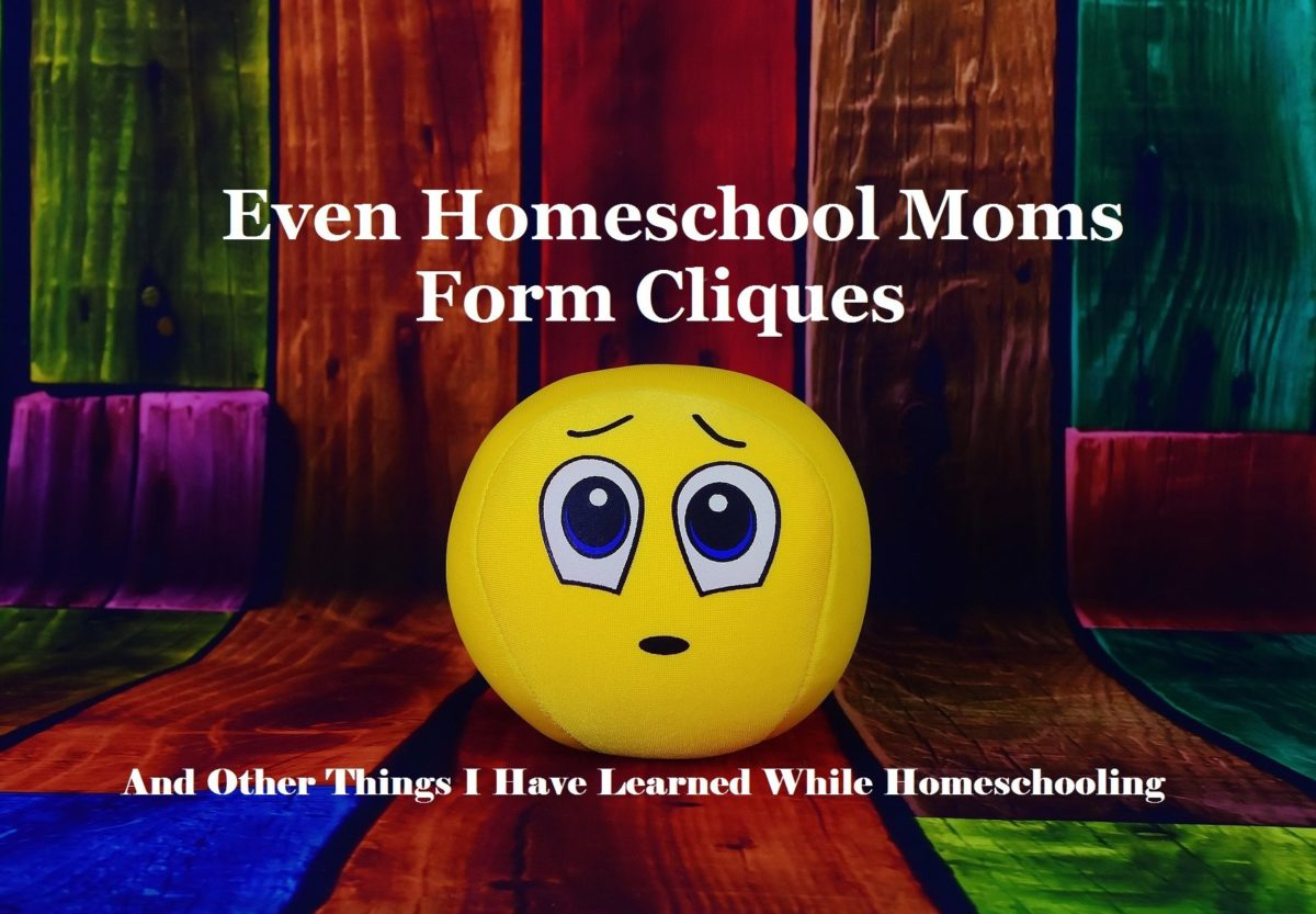 Even Homeschool Moms Form Cliques