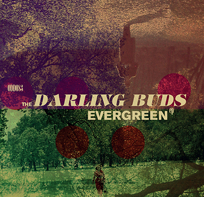 The Darling Buds Evergeen
