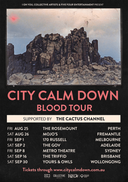 City Calm Down Tour Poster