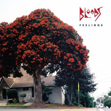 Bloods - Feelings Album Cover.jpeg