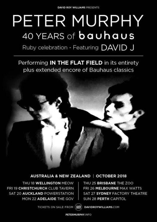 Peter Murphy Tour Poster.jpg