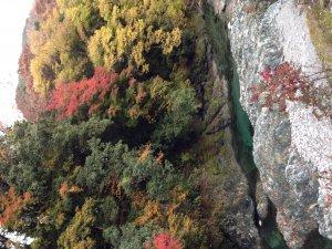 ぶなの湯の横を流れる渓谷