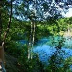 東京から十二湖(白神山地)への日帰り