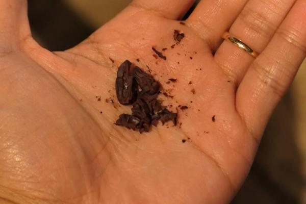 Manoaチョコレート