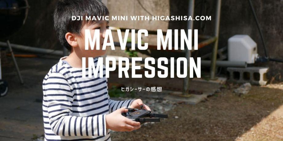 How To DJI Mavic Mini (1)