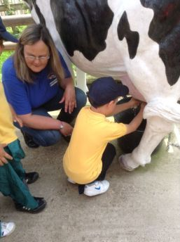 Reception visit Godstone Farm - June 2015[4]