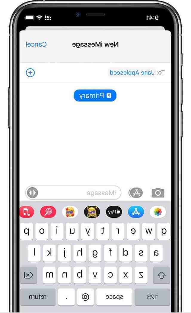 Is iPhone 11 Pro Max dual SIM?