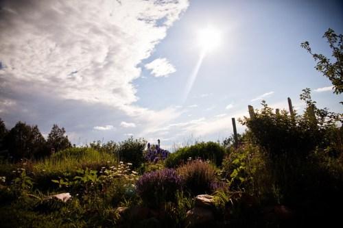 hand artes garden