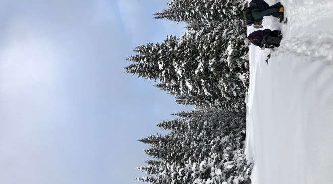 Two snowboarders have hiked through the snow and are adjusting their equipment in the foreground with tall, snowy conifers covered in snow in the background.