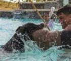 doberman-biting-in-water