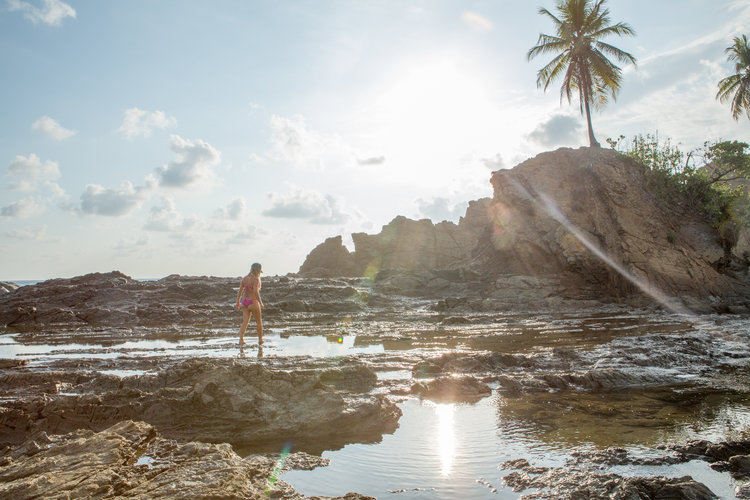 Tide pool adventures in Costa Rica - Higher Tides
