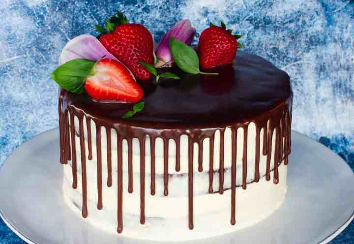 image of sourdough enriched chocolate cake with vanilla frosting and chocolate ganache drip with strawberries and magnolia flowers on top