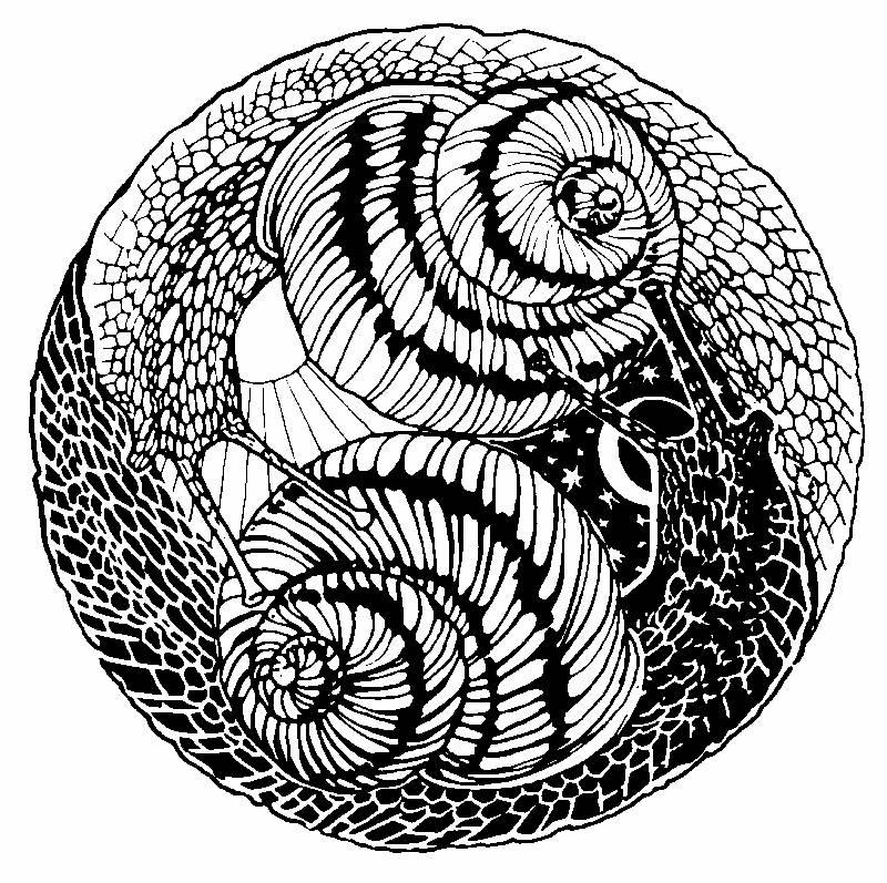 Image result for alfred roller watch design