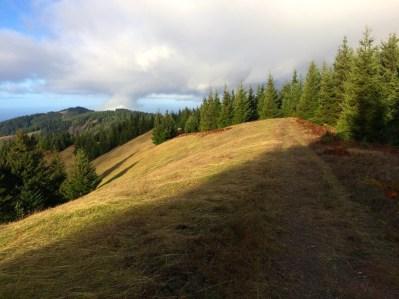 Cooksie Ridge - Friday