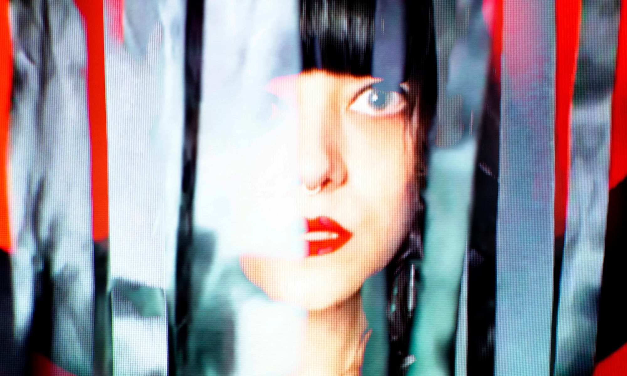 photo of AMMO