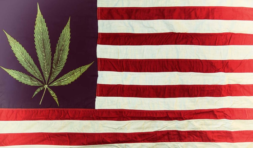 American cannabis consulting