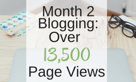Month 2 Blogging: Over 13,500 Page Views