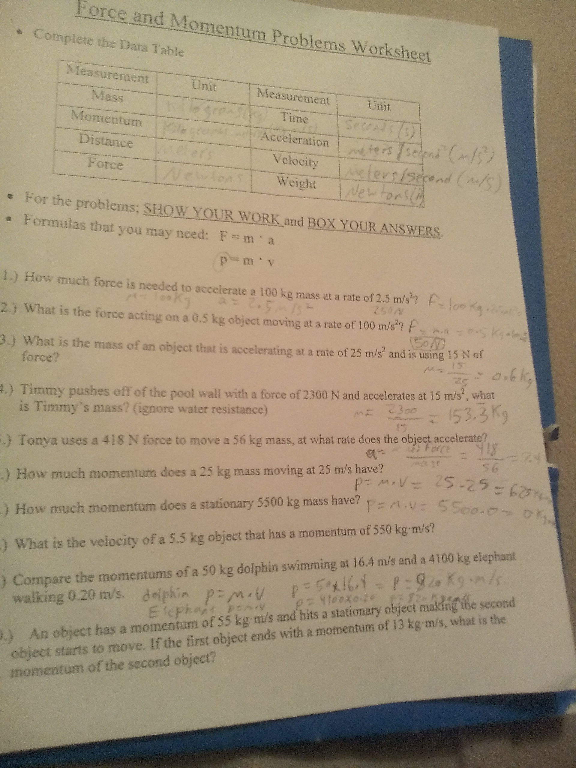 Bst Forces Worksheet