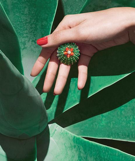 Cactus de Cartier
