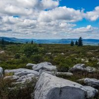 Hiking Dolly Sods and Roaring Plains
